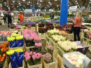 800px-new_covent_garden_market_-_flower_market-2